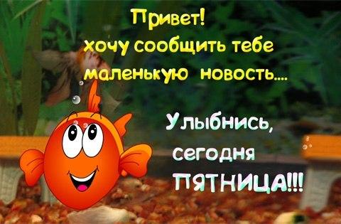 http://fotovideoforum.ru/resources/image/58478